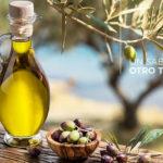 grupo de cooperación Quixote Organic Foods
